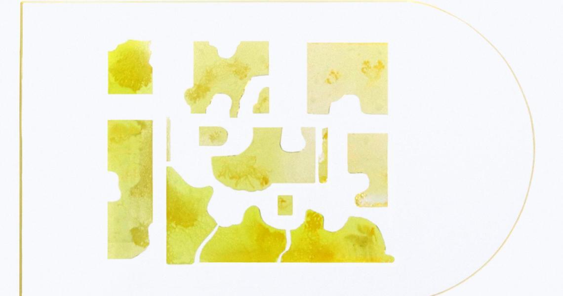 Slime mold panel