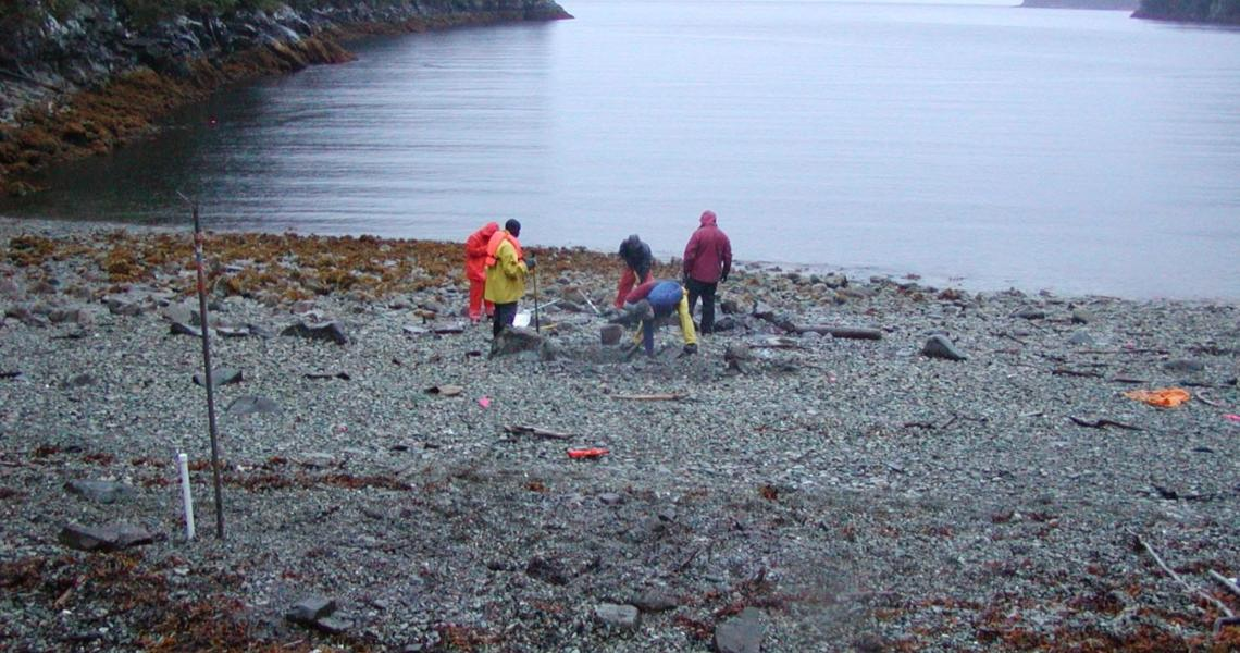 Testing for temperature and salinity along the Prince William Sound in Alaska