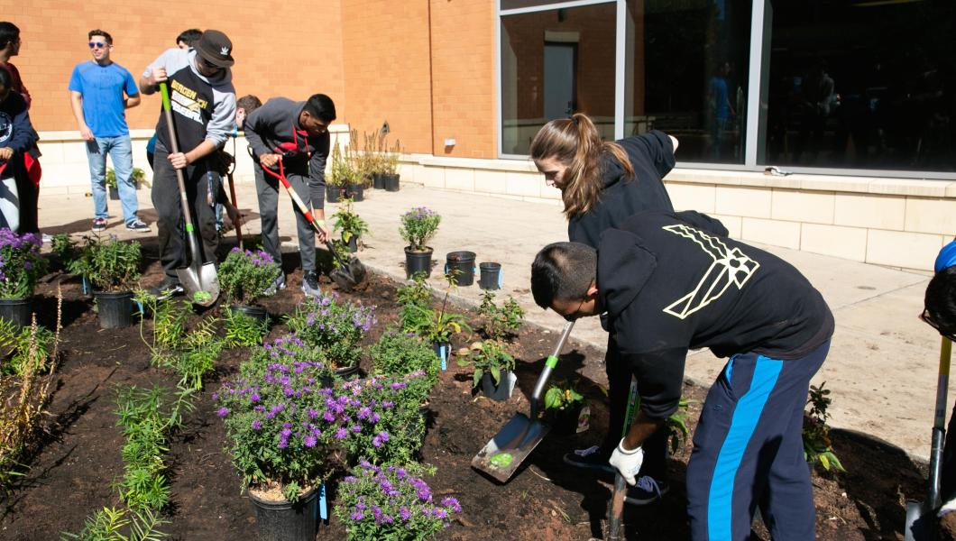 Honors students participate in planting project to increase biodiversity on campus.