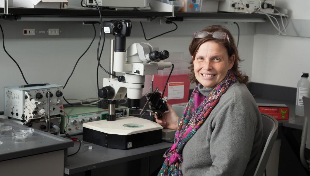 Assistant Professor Daphne Soares in her Central King Building lab