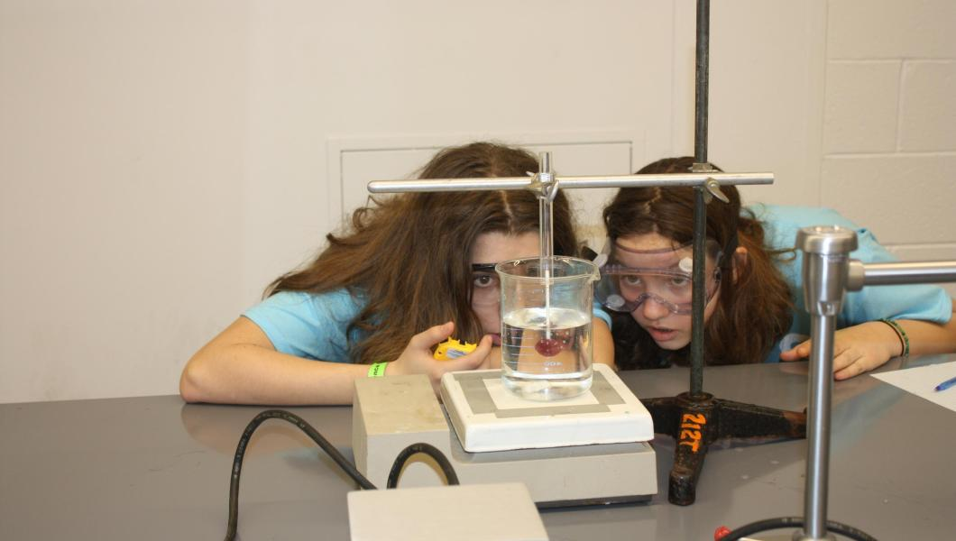 Middle schoolers observe the dissolving of a lollipop for the Olympiad's Experimental Design activity.