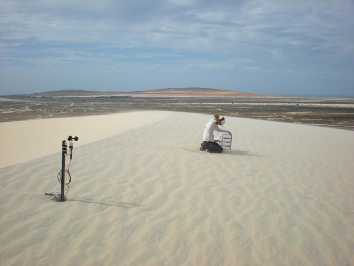 Professor Nancy Jackson has studied beaches and dunes at various global locations, including at this coastal dune system in Brazil.