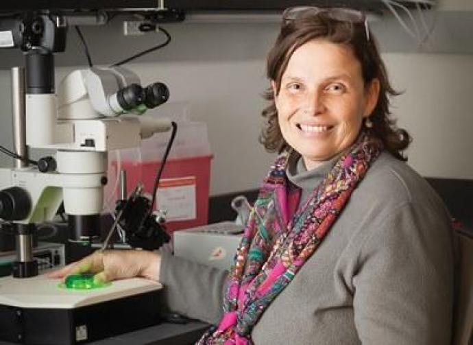 Lab director Daphne Soares