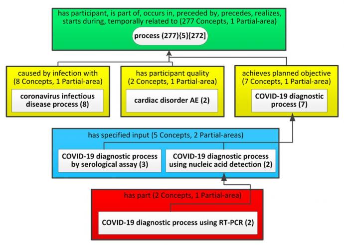 Figure 3. Expansion of the process subject