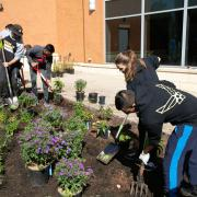 Planting With Purpose: Honors Students Foster Biodiversity on Campus